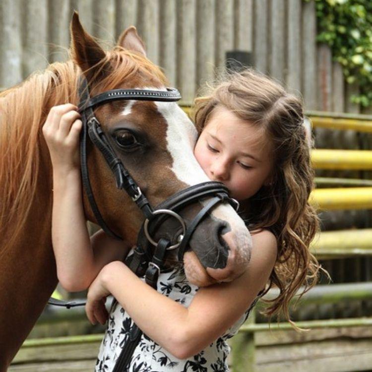 Zufriedenes Kind mit Pferd